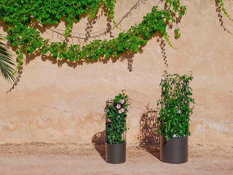 Cómo decorar un jardín pequeño